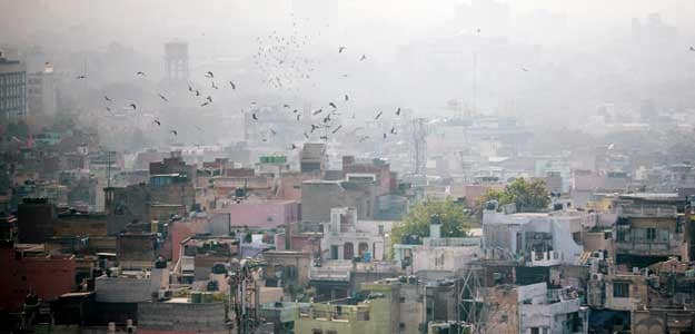 Developers in Delhi-NCR have focused on the affordable segment that accounted for 41% of total launches in the March quarter with launch of 1,855 units, says property consultant Cushman & Wakefield.