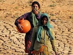 What Steps Have Been Taken To Tackle Drought? Bombay High Court Asks Maharashtra