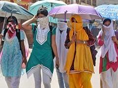 Severe Heat Across North India, Delhi Records Season's Hottest Day
