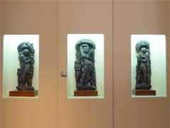 Kolkata's Indian Museum Collection Going Online With Google