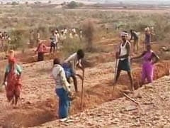 With Work, Karnataka Attempts To Stop Migration Due To Drought
