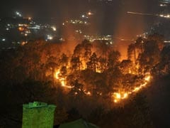 Forest Fires: Green Court Issues Show Cause Notices To Uttarakhand, Himachal