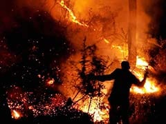 Forest Fires Flare Close To Famous Shimla Railway