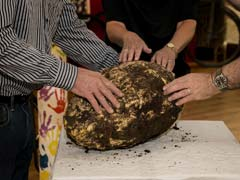 Man Finds 22-Pound Chunk Of Butter Estimated To Be More Than 2,000 Years Old