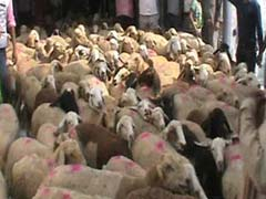 In Deoria, Angry Protesters Get Help To Say 'Baa' To Officials
