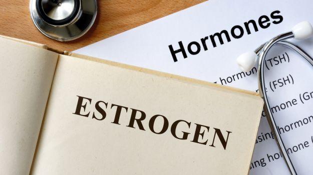 5 Estrogen Rich Foods for Balanced Hormones