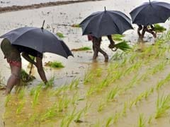 Monsoon Rains Could Fall Below Average In India: Report