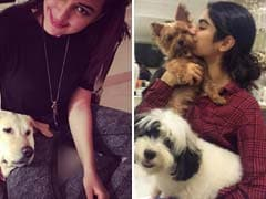 Five Star Pets Who Are As Adorable As Their Celeb Owners