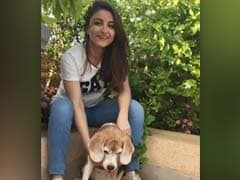 Keeping Up With Soha Ali Khan and Her Pack of Pooches
