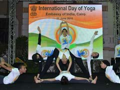 International Yoga Day Celebrated In Egypt's Indian Embassy