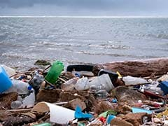 Plastic Debris Poses Threat To Marine Life Along Goa's Coast