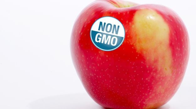 People Want GMO Food Labeled - Which is Pretty Much all They Know About GMOs