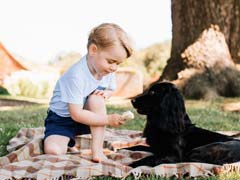 On Prince George's Third Birthday, Four Adorable New Pics. You're Welcome