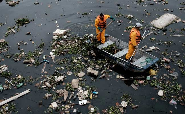 Corpses, Excrement, Litter: Welcome To Rio Olympic Sailing Venue