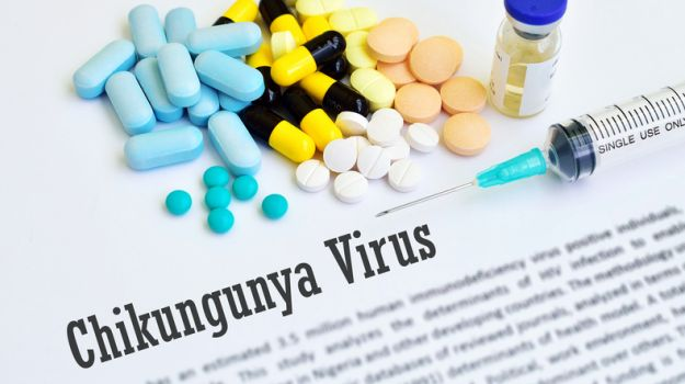 Chikungunya Symptoms And All You Need To Know