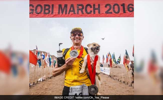 Ultra-marathoner adopts stray dog that followed him during race