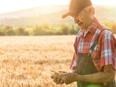 Farmers Who Donate Surplus Fruits & Vegetables Seek Tax Credit In New York