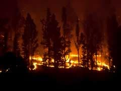 German Man Burns Soiled Toilet Paper, Sparks Forest Fire In Spain