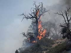 Southern California Firefighters Make Progress; 100 Homes Destroyed