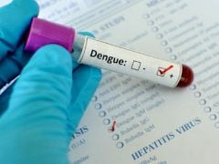 24 Infected With Dengue In Mizoram, Figures Likely To Soar