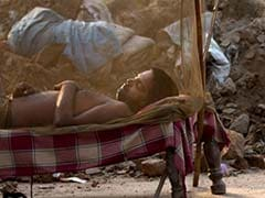 Why Delhi Is Failing In Fight Against Malaria, Chikungunya. Here's What It Must Do