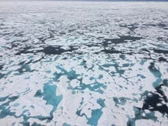 The Arctic Is Being Utterly Transformed - And We're Just Starting To Learn The Consequences