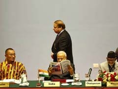 SAARC Has 'Survived' Not 'Triumphed', Says Pak PM Nawaz Sharif