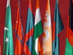 SAARC Members Must Ensure Territory Not Used For Terror: Nepal