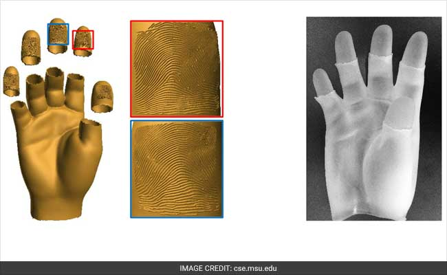 real 3d hands