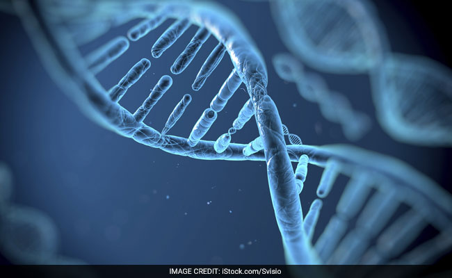 Gene Therapy May Treat Alzheimer's: Study