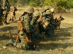 In A First, Special Medals For Indo-Tibetan Border Police Canines, Horses