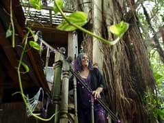 It's My Tree, Let Me Be: Woman Tries To Save Leafy Abode