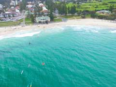 Drones To Monitor Shark Activities In Australia
