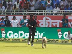 India vs England: Dog's Day Out Forces Early Tea on Day 1 of 2nd Test in Vizag