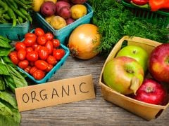 BIOFACH India: World's Leading Trade Fair for Organic Food Comes to Delhi