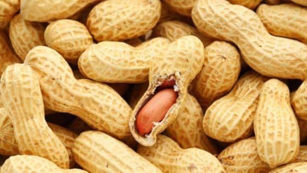 peanuts 620