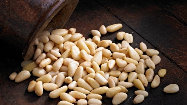 8 Health Benefits of Pine Nuts (Chilgoza): The Nutty Winter Treat