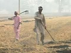 Acres Of Field Continue To Burn In Mukhtsar: Ground Report On Punjab's Crop Fires