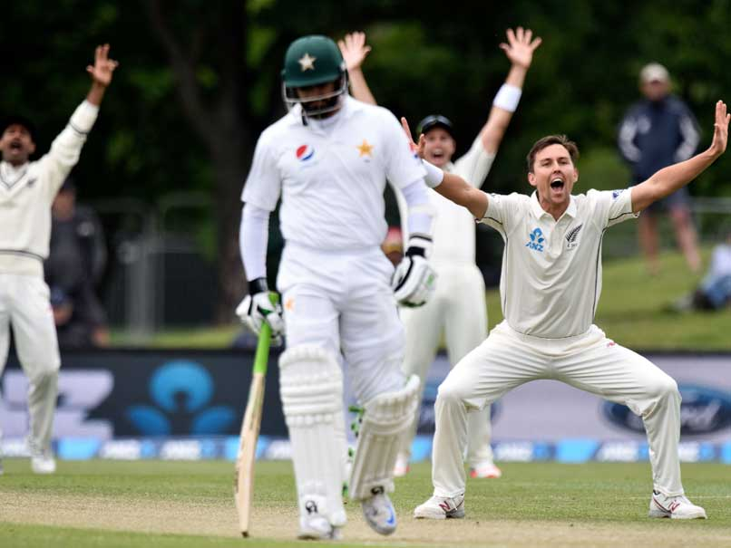 New Zealand saunters to eight-wicket win