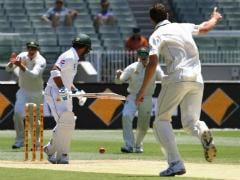 Australia Crush Pakistan by 220 Runs in Sydney Test, Sweep Series 3-0