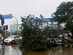 After Cyclone Vardah, Tamil Nadu Asks For Rs 1,000 Crore Relief: 10 Points