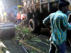 Chennai's Late Night Drive To Remove Trees Uprooted By Cyclone Vardah