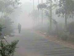 Thick Fog In Delhi, North India, Flight Operations Affected