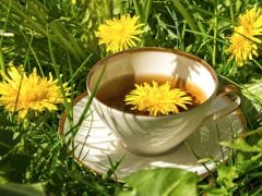 8 Amazing Benefits of Dandelion Tea for Your Health