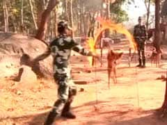 Indian Dogs Now Part Of Bomb Disposal Squad In Bastar