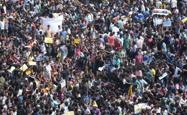 Image result for chennai marina protest