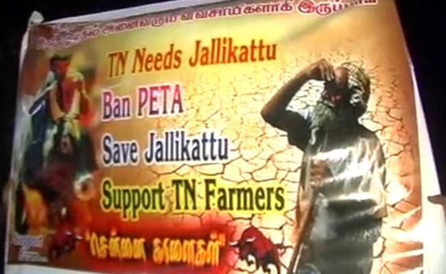 200 youths taken into custody over Jallikattu protests