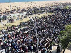 Day 3 Of Jallikattu Protests And The Mood At Chennai's Marina Beach Is Electrifying