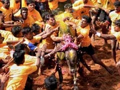 On Jallikattu, Centre or State Or Both May Act, Says Government's Top Lawyer