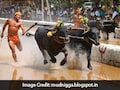 After Jallikattu Row, Karnataka Wants Ban Lifted On Kambala - Buffalo Race